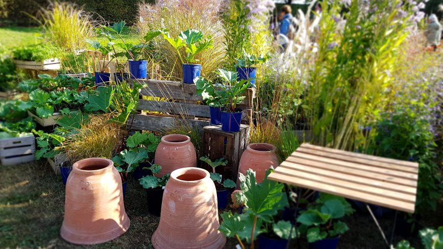 Florovivaismo e giardinaggio: le mostre mercato 2017