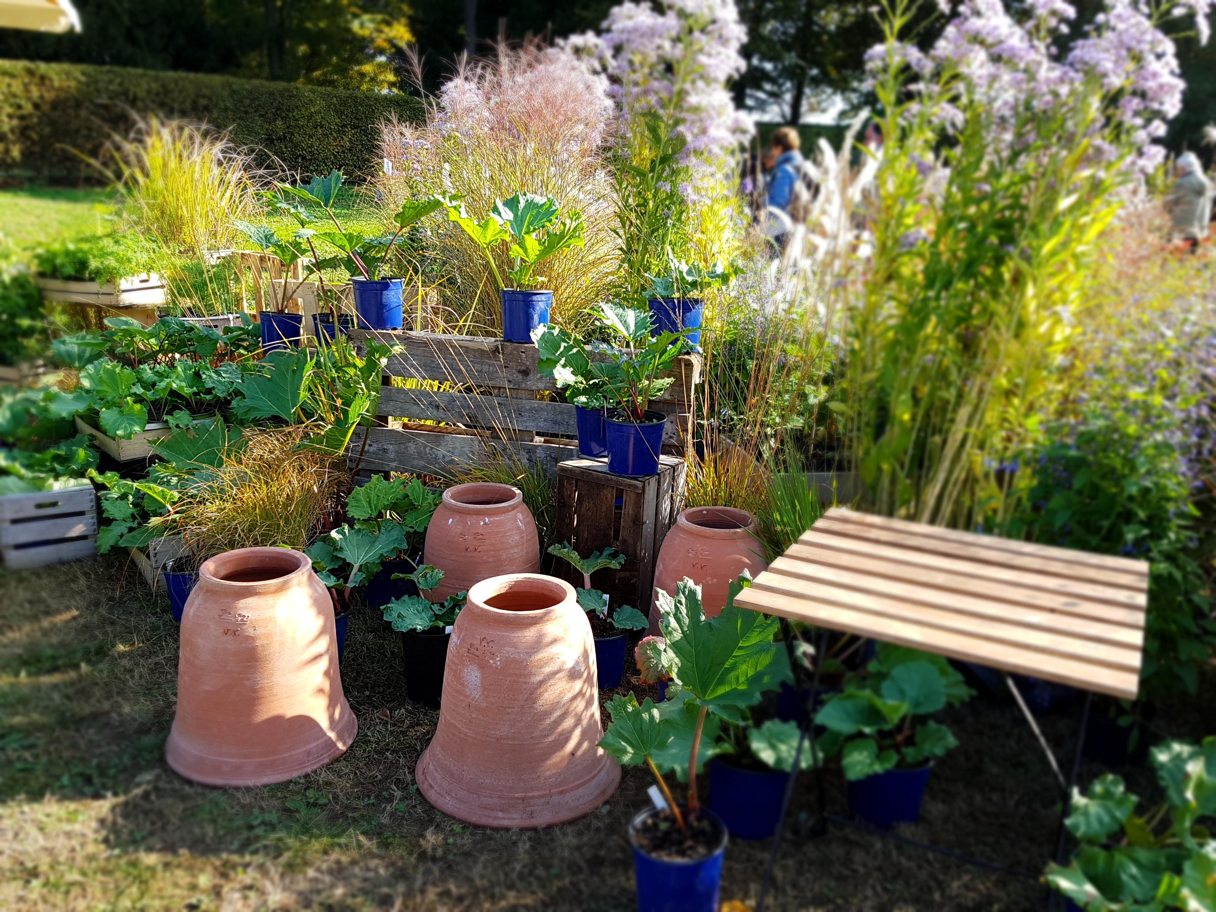Mostre mercato 2017 giardinaggio florovivaismo fiori - Fiera giardinaggio ...