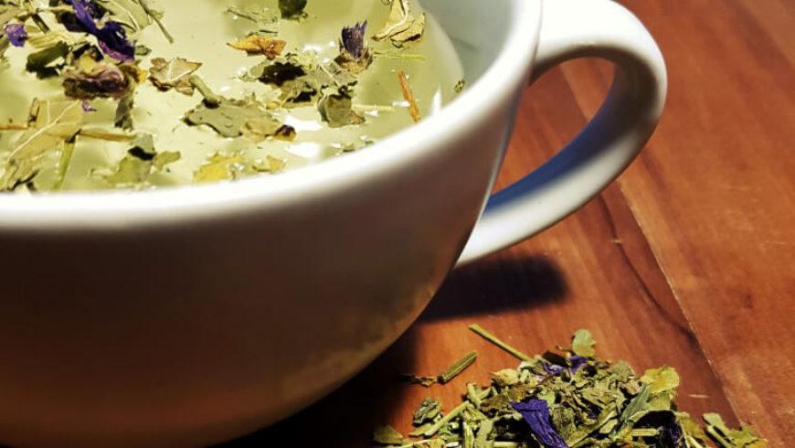 Tisana alla Malva: ricetta e proprietà antinfiammatorie