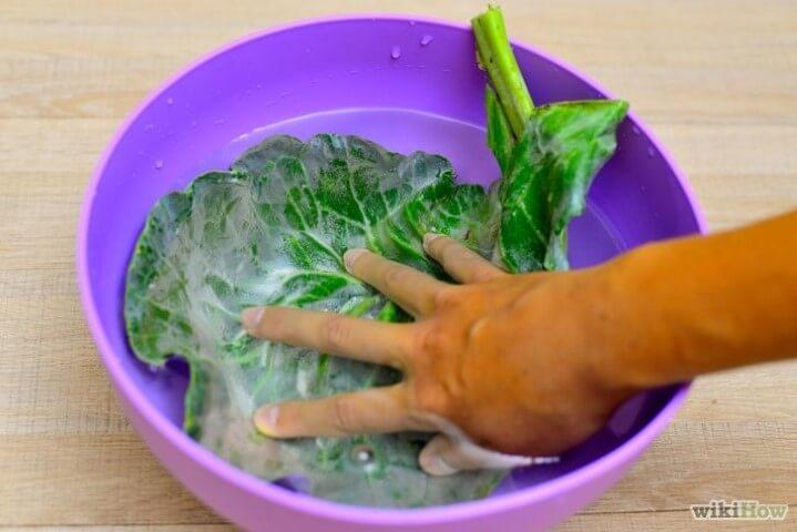 Come cucinare i cavoli comprare e utilizzare con for Cucinare 5 minuti