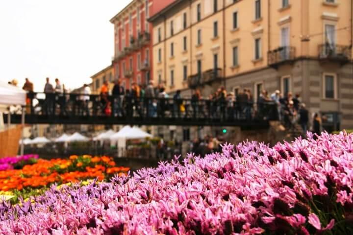 Fiori e sapori sul naviglio grande milano fiori eduli for Il naviglio grande ristorante