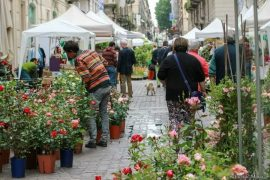 Flor Torino 2017, vi aspettiamo il 26-28 maggio