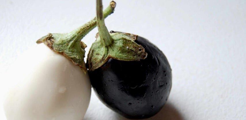 Piante da frutto nane le melanzane da coltivare in vaso o for Piante da frutto vaso