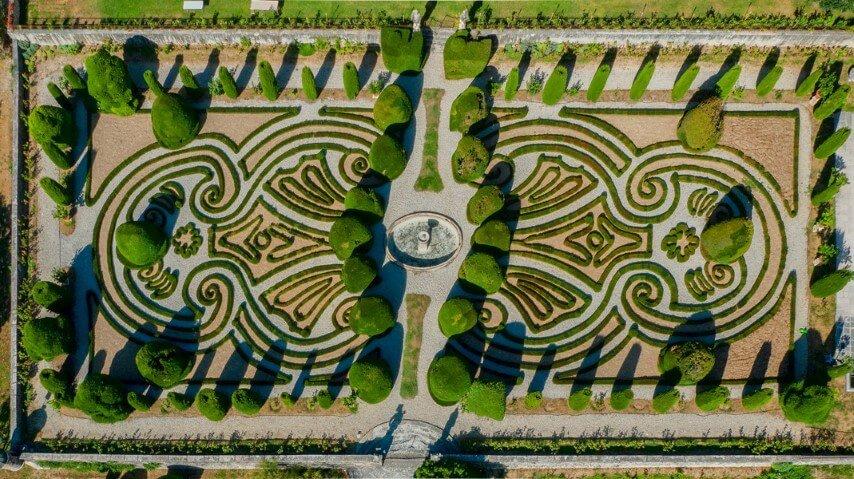 4 piante ornamentali da giardino con fiori bellissimi for Giardini ornamentali
